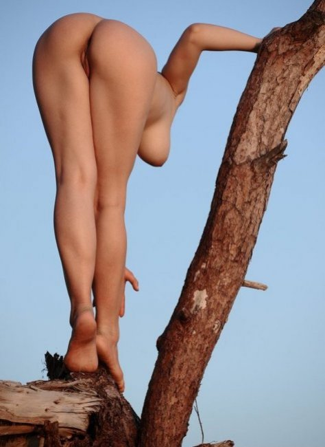 Hot chick climbs trees naked